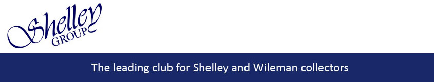 New Shelley Group logo